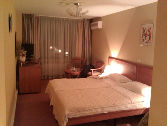 Baikal Business Centre Hotel: View of room from the door