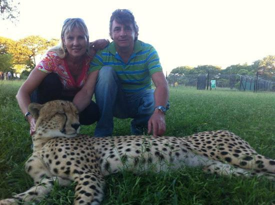 Emdoneni Lodge: Up close and personal with Africa's most beautiful cat