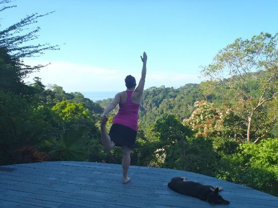 Luna Lodge: Yoga