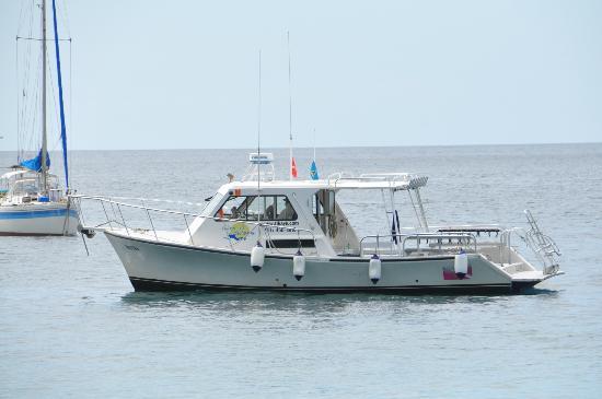 Island Divers: Dive boat