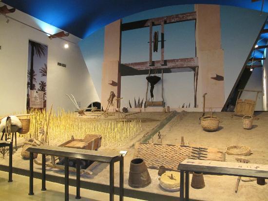 Musee du Patrimoine Traditionnel Djerbien: Une des salles du musée