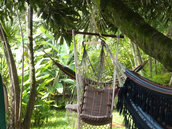 The Green Saman: Community of hammocks