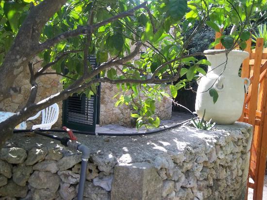 Villa Grotta Monaca: esterno 5