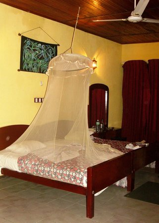 New Boa Vista Hotel : The bedroom and inadequate net