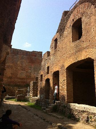 Exclusive Rome Tour - Tours: Ostia Antica, old street and insula (roman times condominium building)
