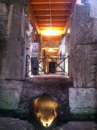 Exclusive Rome Tour - Tours: The undergrounds under the Coliseum Rome