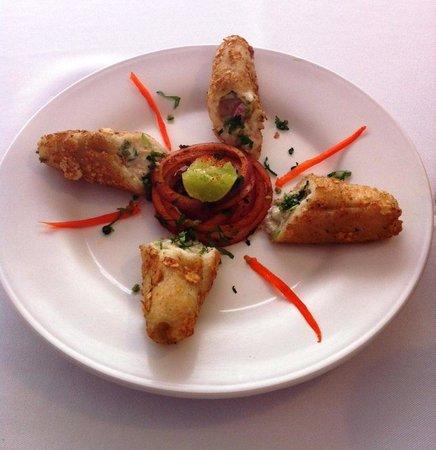 Indian Chaat: Dahi Kebab