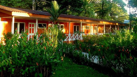 La Baula Lodge : Rooms