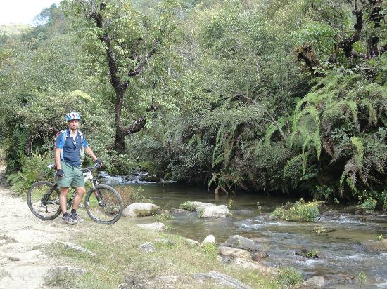 Himalayan Single Track: Riding in the jungle