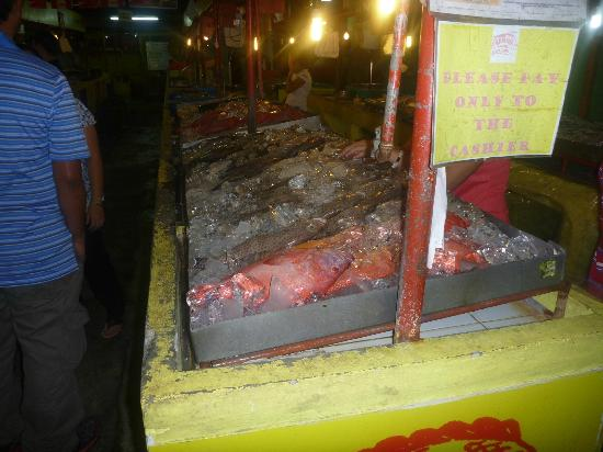 Dampa sa Timog: more fish