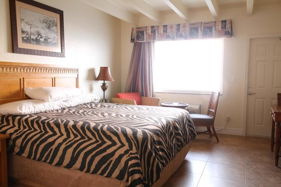OceanFront Inn and Suites: King