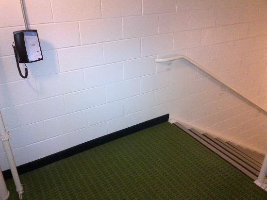 Fairfield Inn & Suites Millville Vineland : nice, carpeted stairwell