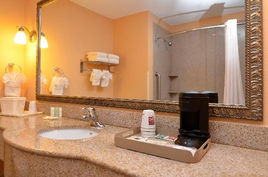 Comfort Suites Gateway: Bathroom