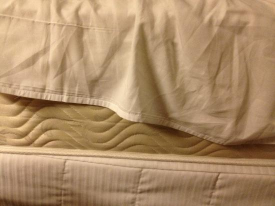 The Westin Charlotte: This is what covered my mattress... unacceptable.