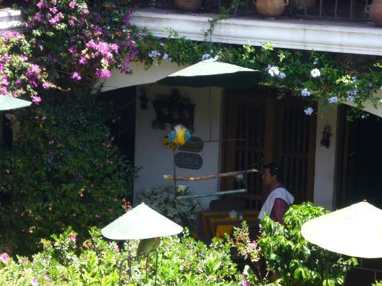 Santo Tomas Hotel: Jardín