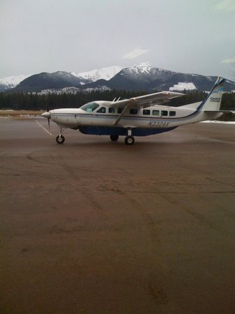 Wings of Alaska  Day Tours