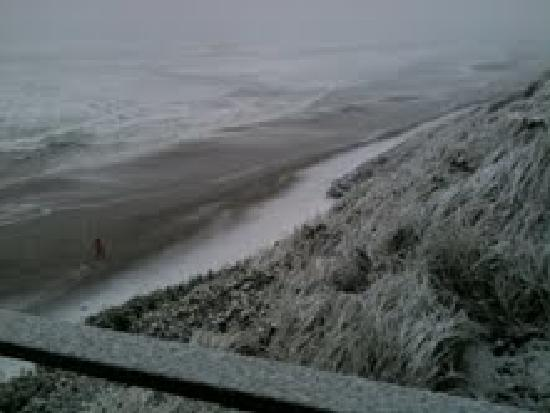 Snowing, right in front of the seagull beach front motel!