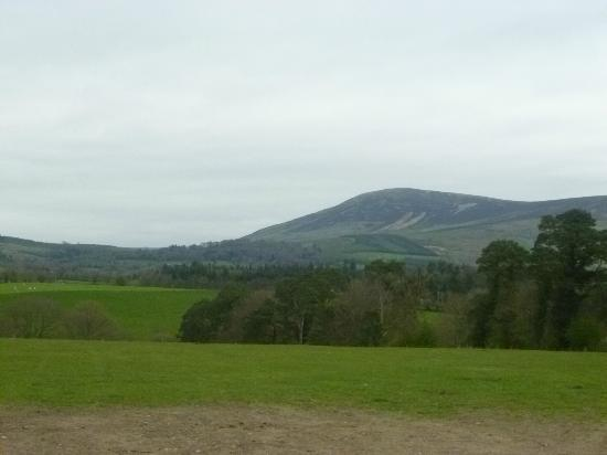 Barraderry Country House: Local views of Wicklow