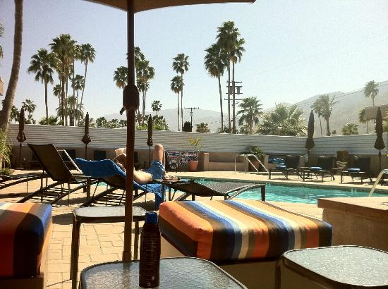 Pura Vida Palm Springs: where i spent most of the week!