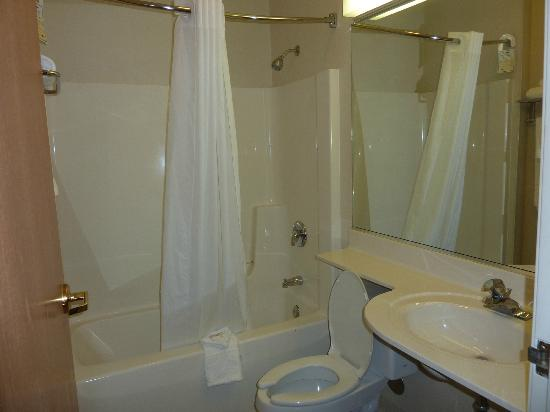 Microtel Inn & Suites by Wyndham Christiansburg/Blacksburg: Bathroom
