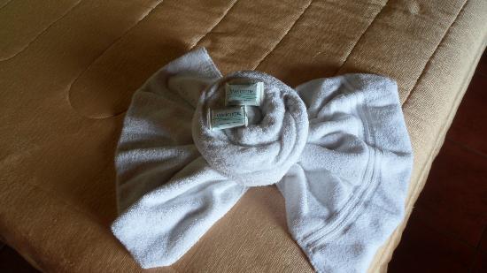 Hotel Cipreses Monteverde Costa Rica: Towels