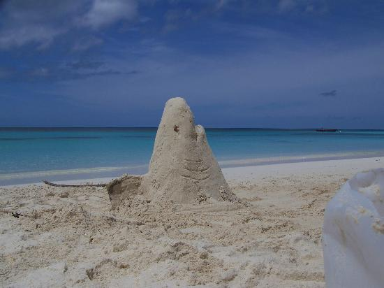 Shoal Bay: Great sculpting sand.