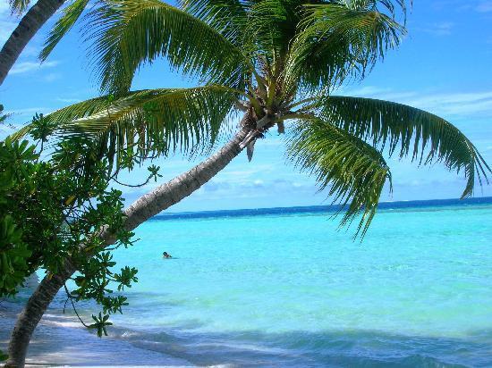 Vaavu Atoll: la laguna