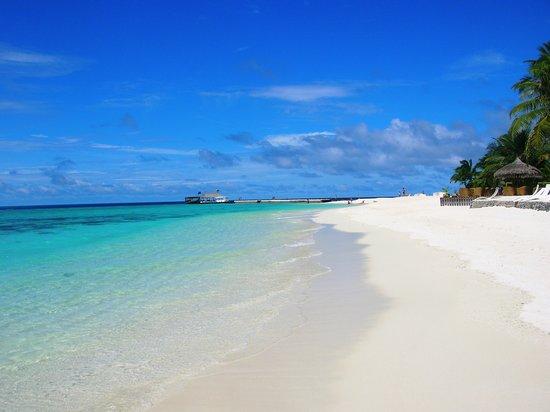 Vaavu Atoll: la spiaggia