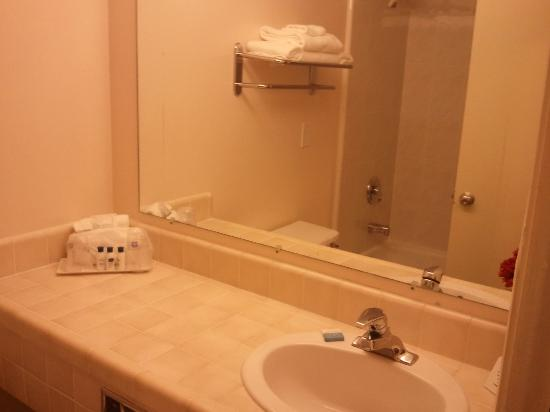 Best Western Inn: typical bathroom