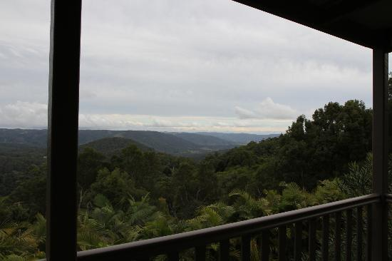 Maleny Luxury Cottages : The gorgeous view!