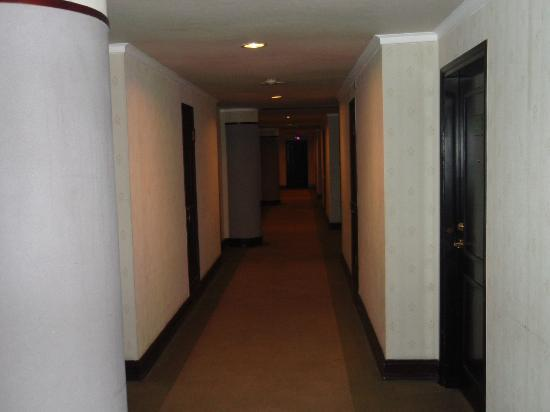 Lake Side Hotel: 廊下