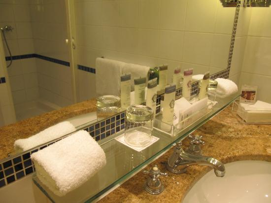 Hotel Lutetia: All amenities you needs provided