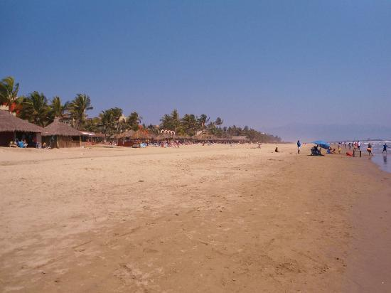 Occidental Nuevo Vallarta: Now that's a spacious uncrowded beach