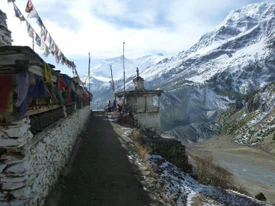 Nepal Hiking : Day 9 - On the way to Letdar