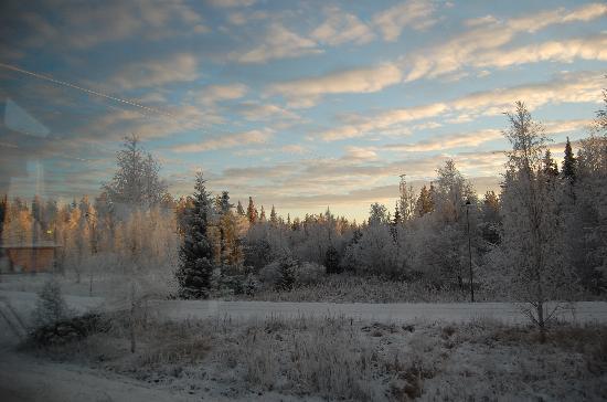 Santa Claus Holiday Village: paesaggio di Rovaniemi al tramonto (14.30 )