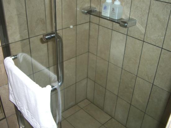 Sapporo Classe Hotel: 独立したシャワーブース
