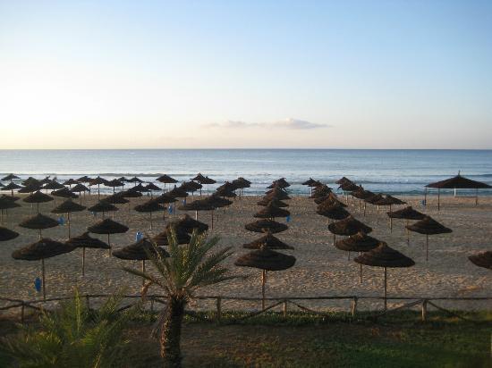 Bousten Long Beach Club: beach