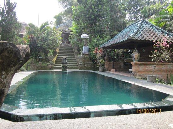 Tanah Merah Art Resort: One of the pools