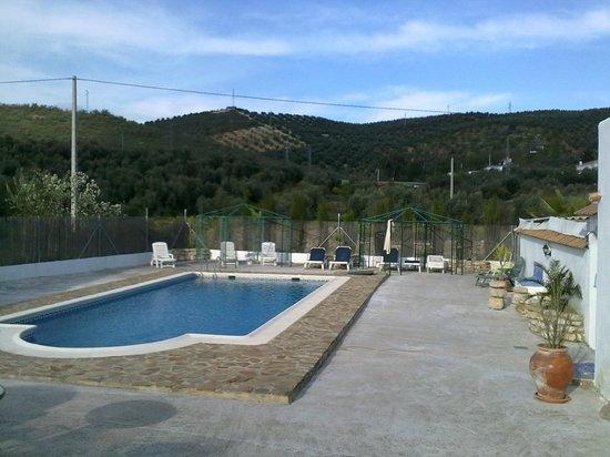 Cortijo Las Olivas: the pool