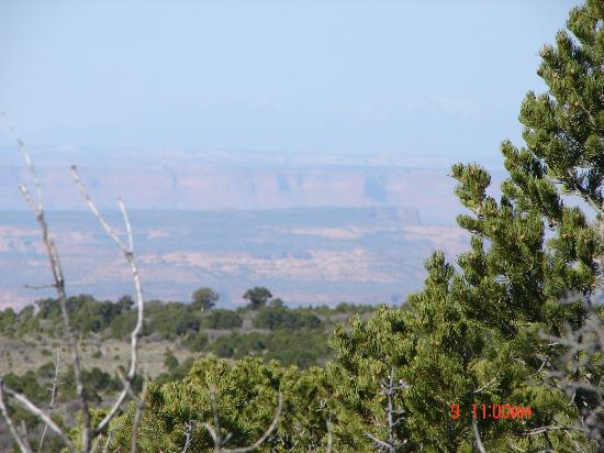 Whispering Oaks Ranch: Just one of many magnificent views...