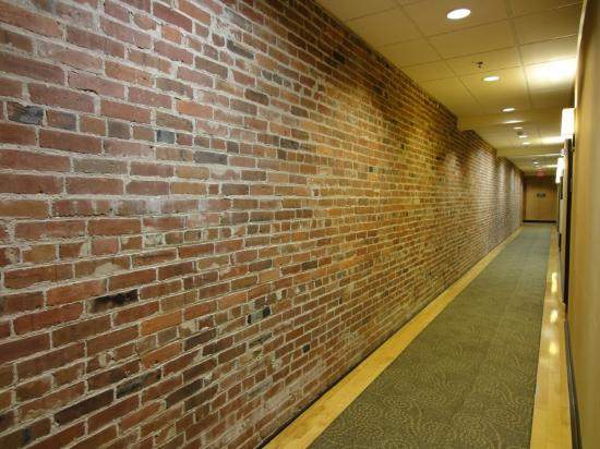 Homewood Suites by Hilton Indianapolis-Downtown: Hallway
