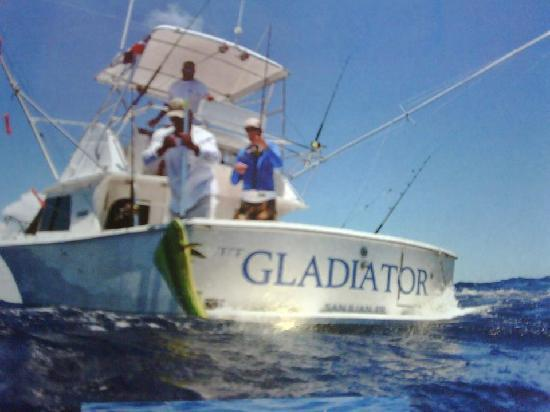 offshore Fishing for Dorado/Mahi on the Gladiator at Mike ...