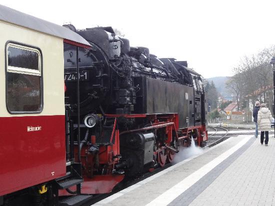 Harzer Schmalspurbahnen: Harzer Schmalspurbahn