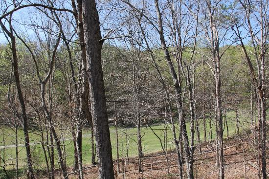 Wyndham Resort at Fairfield Mountains: View of golf course