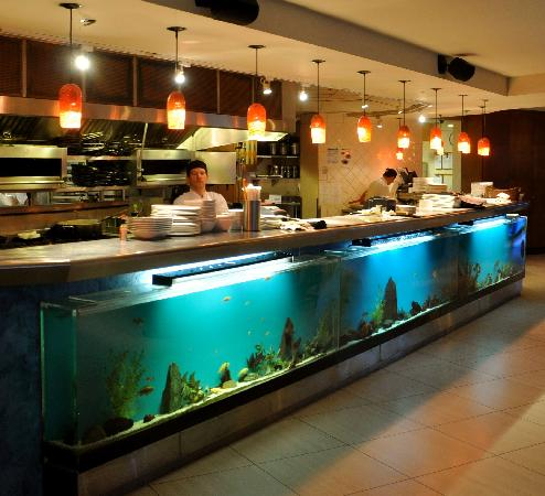 Granville Island Hotel: 52feet of fish tank