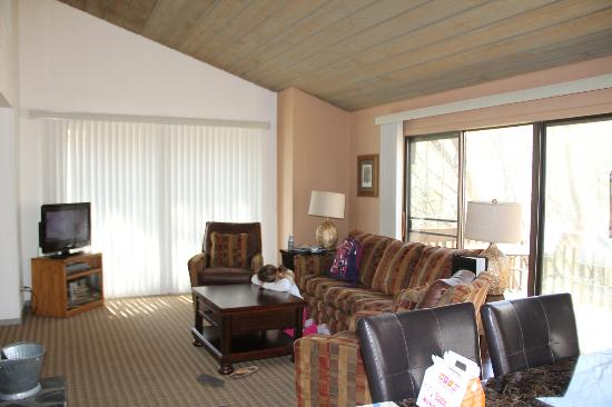 Wyndham Resort at Fairfield Mountains: Living Area and back door