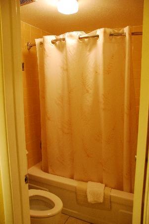 Rodeway Inn East: bathroom