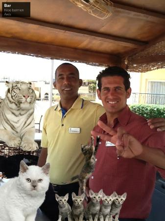 Sol Taba Red Sea: Fun photo of Garrah and Adel (no, the cats are not real!)