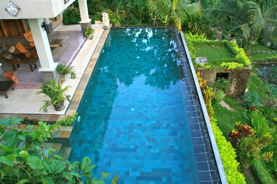 Surya Shanti Villa: Piscine vue de notre chambre