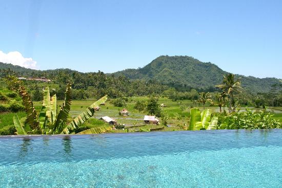 Surya Shanti Villa: Paysage vu de la piscine arrière